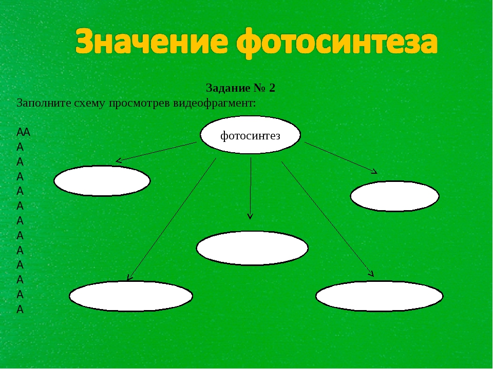 Задание № 2 Заполните схему просмотрев видеофрагмент:            ...