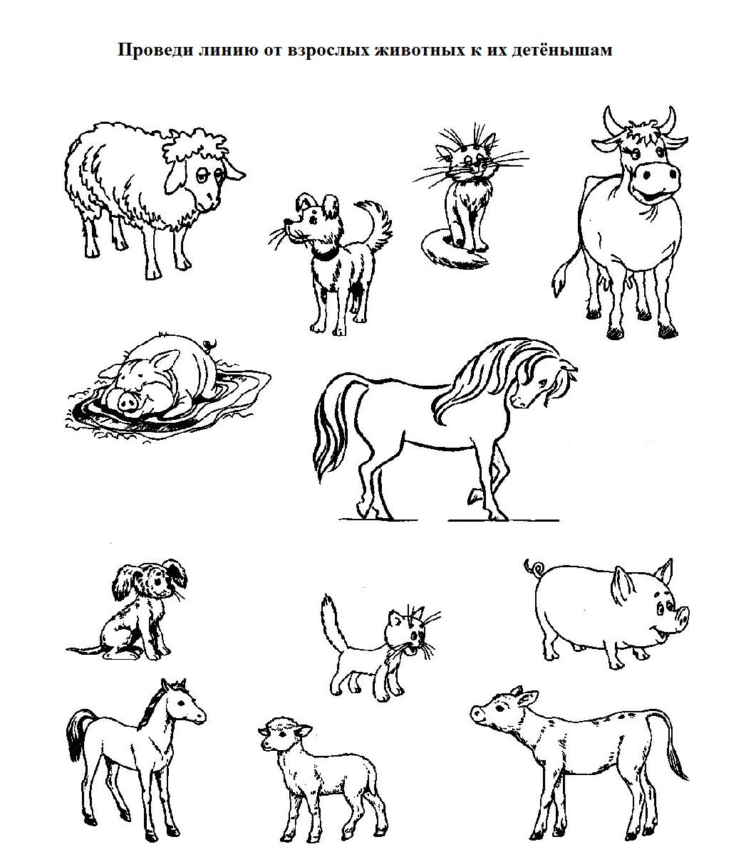 картинки задания по теме домашние животные и их детеныши позволяет сделать одновременно