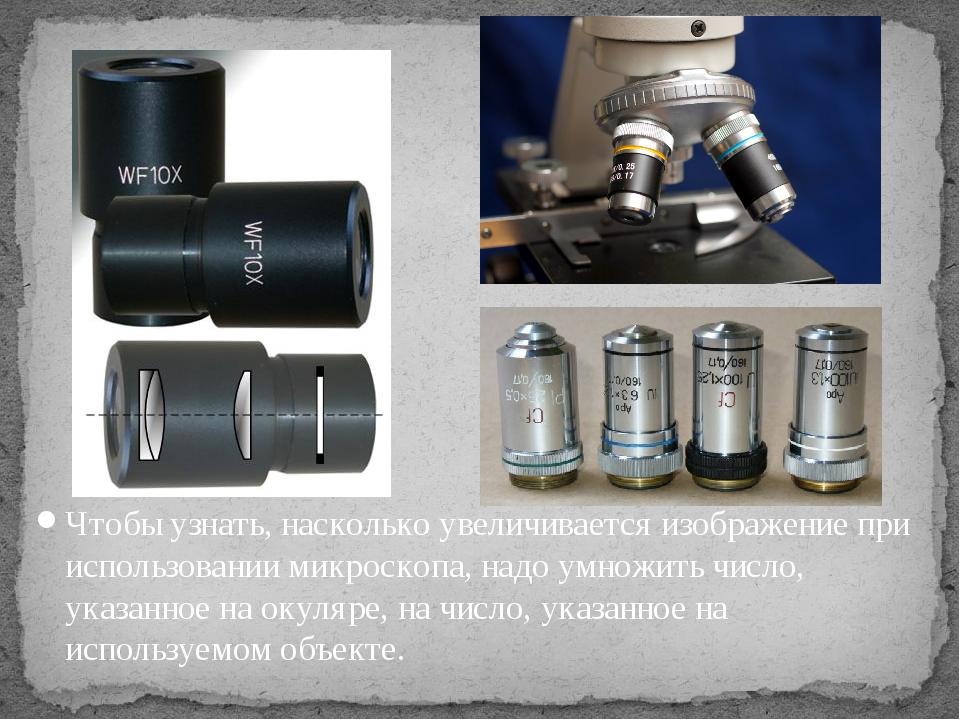 Чтобы узнать, насколько увеличивается изображение при использовании микроскоп...