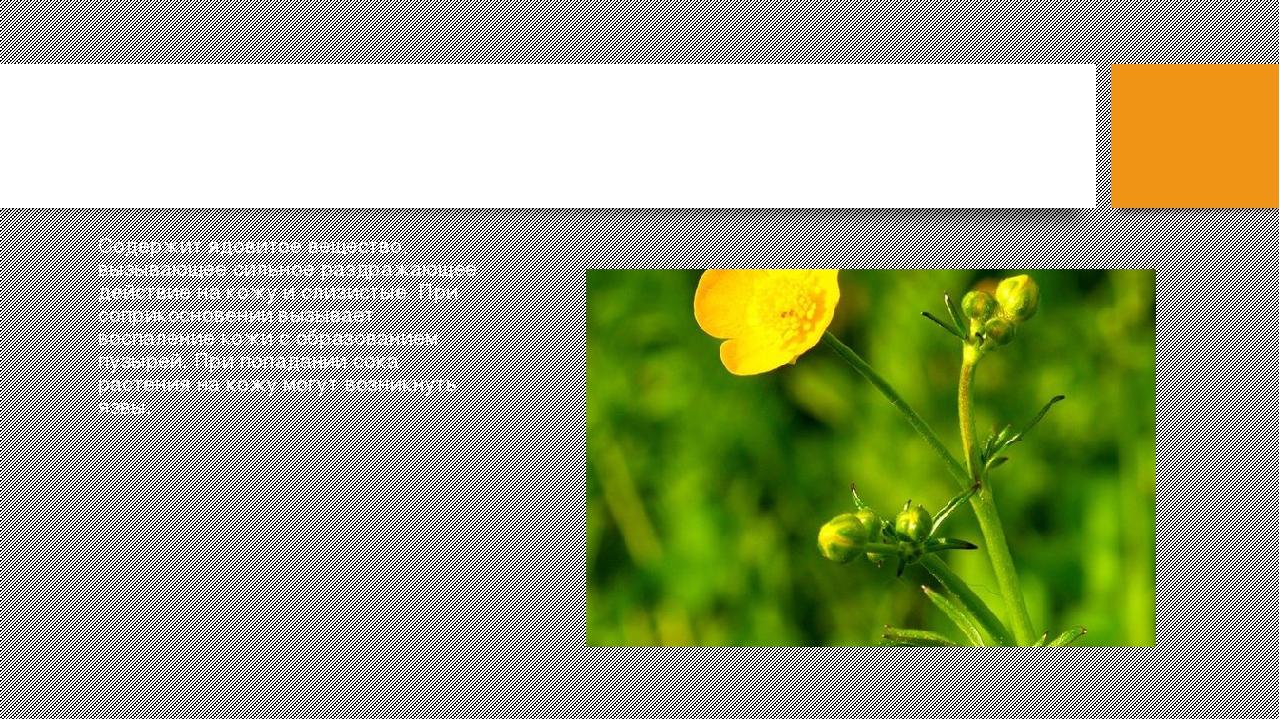 Ядовитые растения беларуси в картинках с названиями