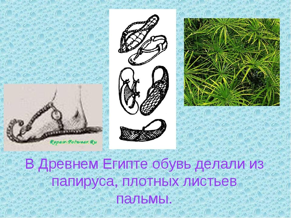 В Древнем Египте обувь делали из папируса, плотных листьев пальмы.