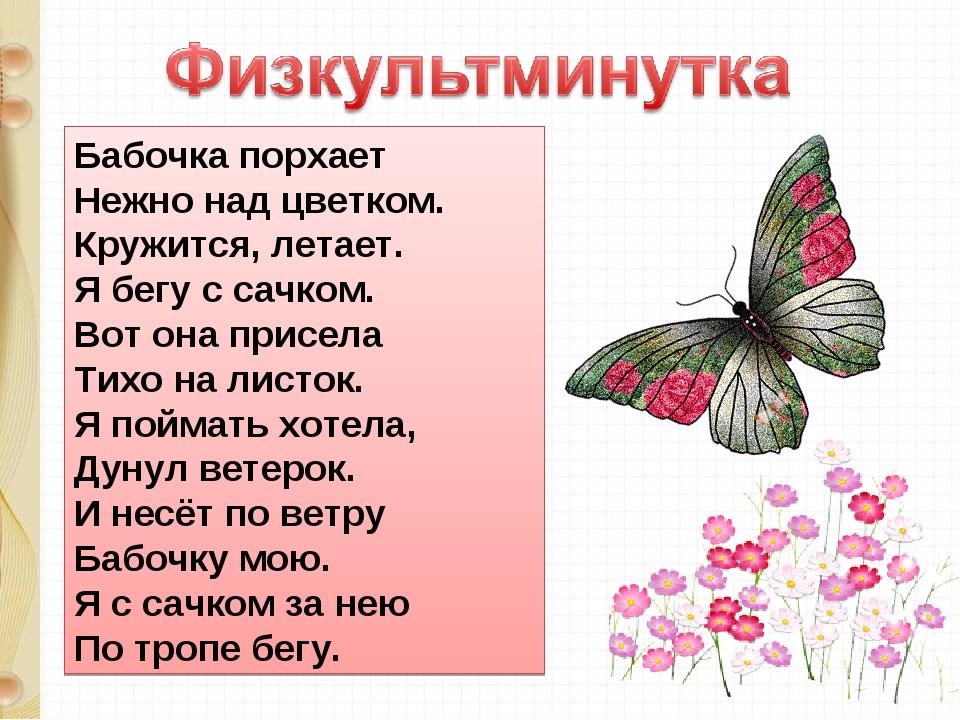 Бабочка порхает Нежно над цветком. Кружится, летает. Я бегу с сачком. Вот она...