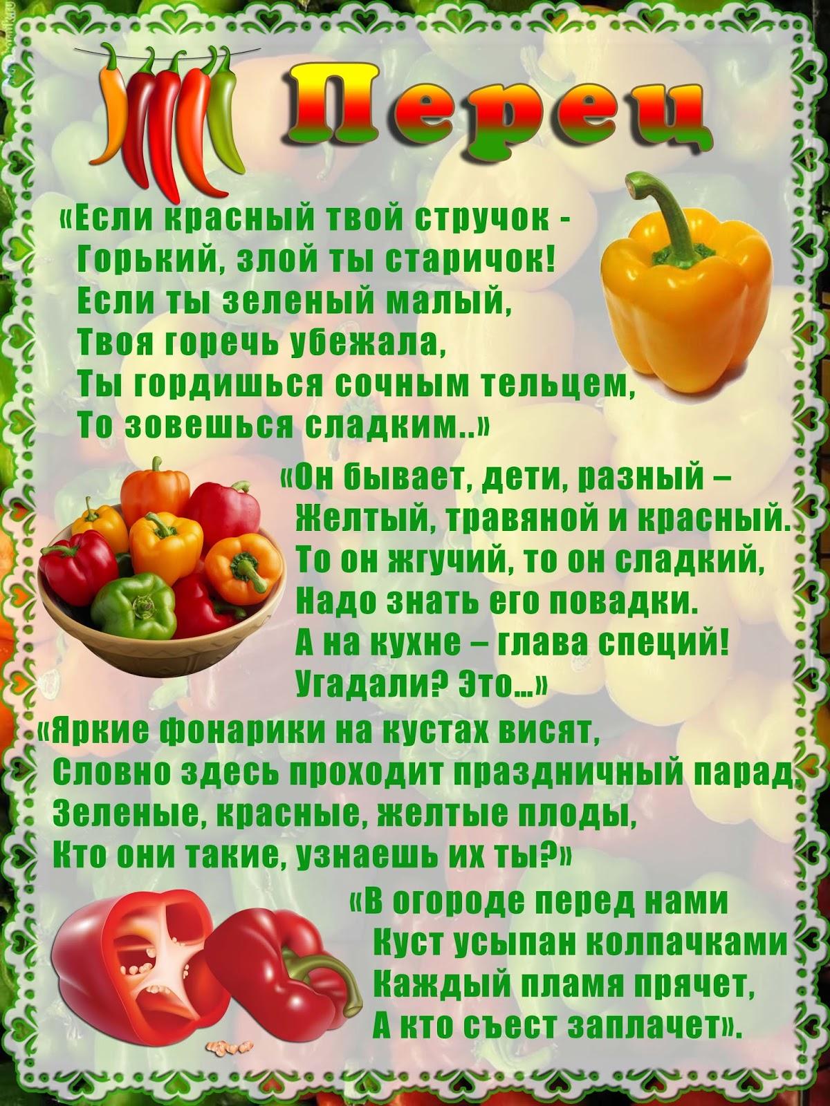 разнообразной пословицы про овощи с картинками встрече, мне была