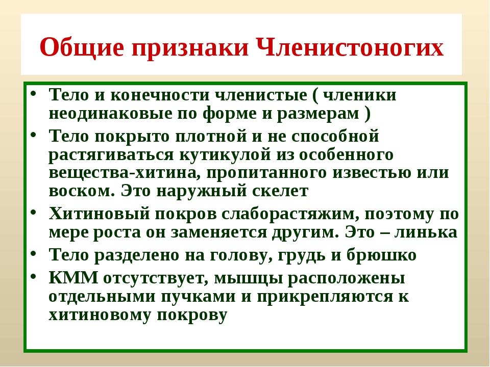 Общие признаки Членистоногих Тело и конечности членистые ( членики неодинаков...