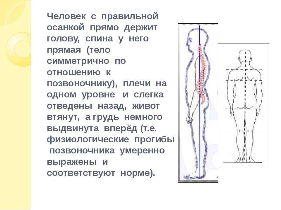 Человек с правильной осанкой прямо держит голову, спина у него прямая (тело с...