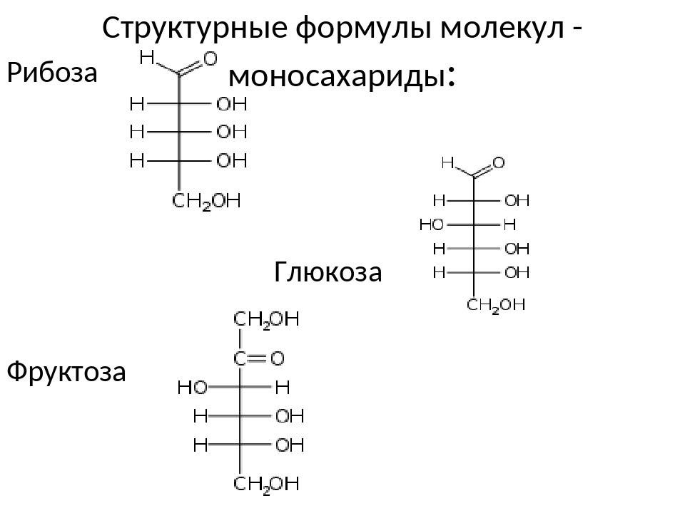 Структурные формулы молекул - моносахариды: Рибоза Глюкоза Фруктоза