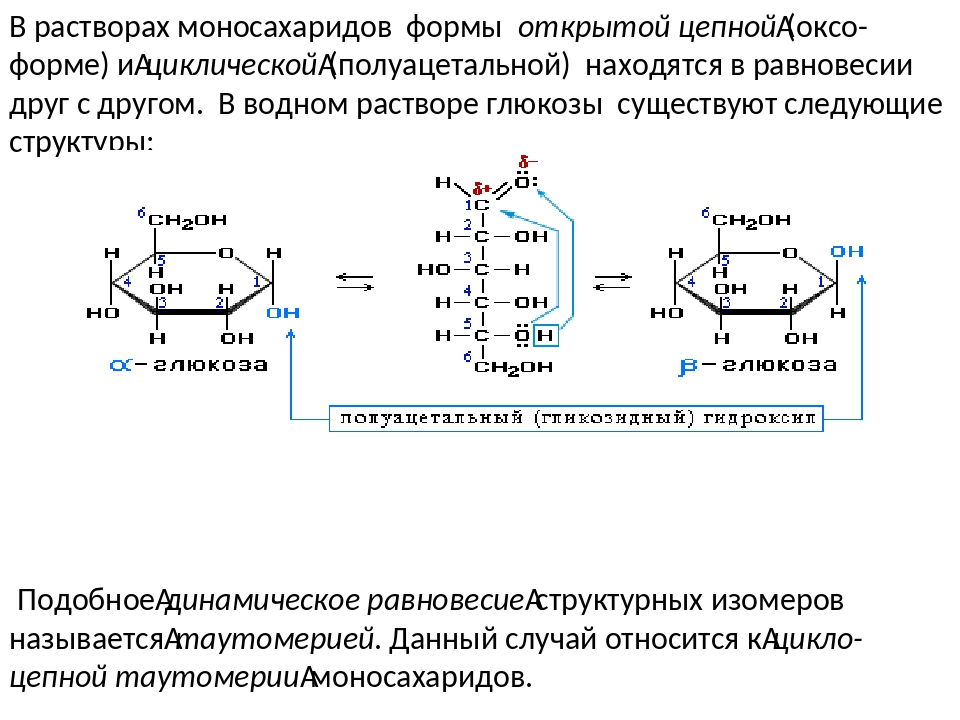 В растворах моносахаридов формы открытой цепной(оксо-форме) ициклической(п...