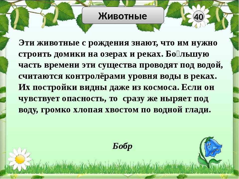 Красная книга 10 Узнай птицу Филин