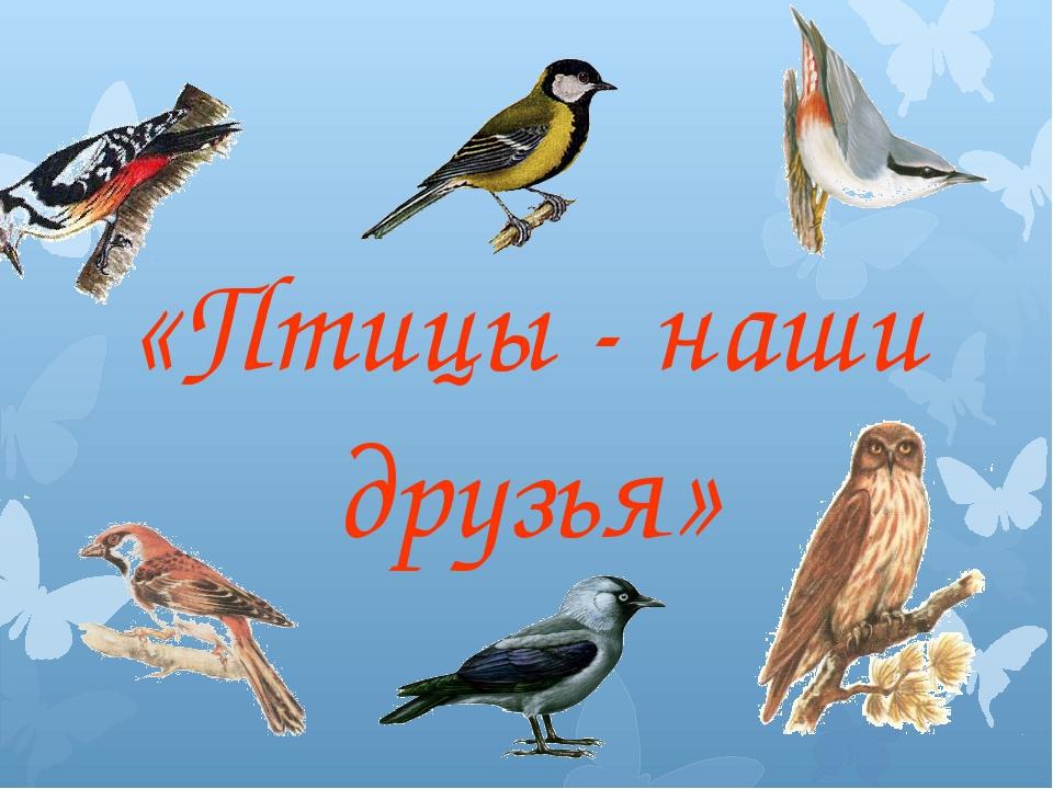 Картинки про производство для презентации птиц