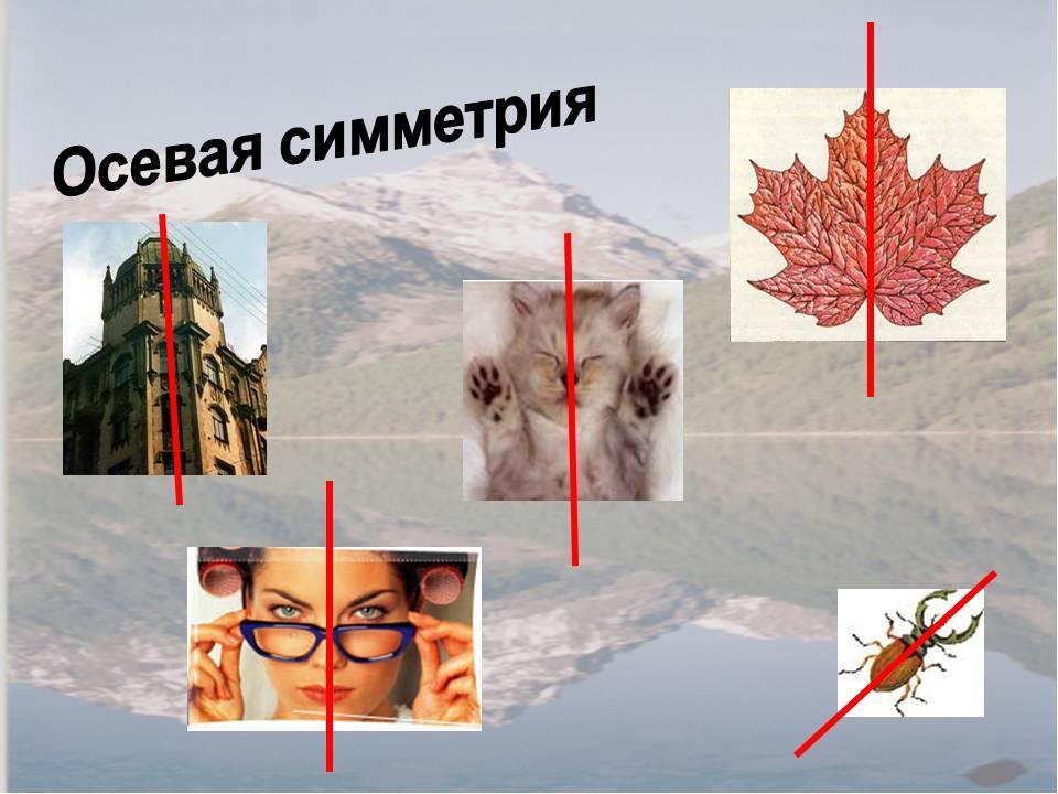 каждого примеры центральной симметрии в жизни картинки каждый раз такой