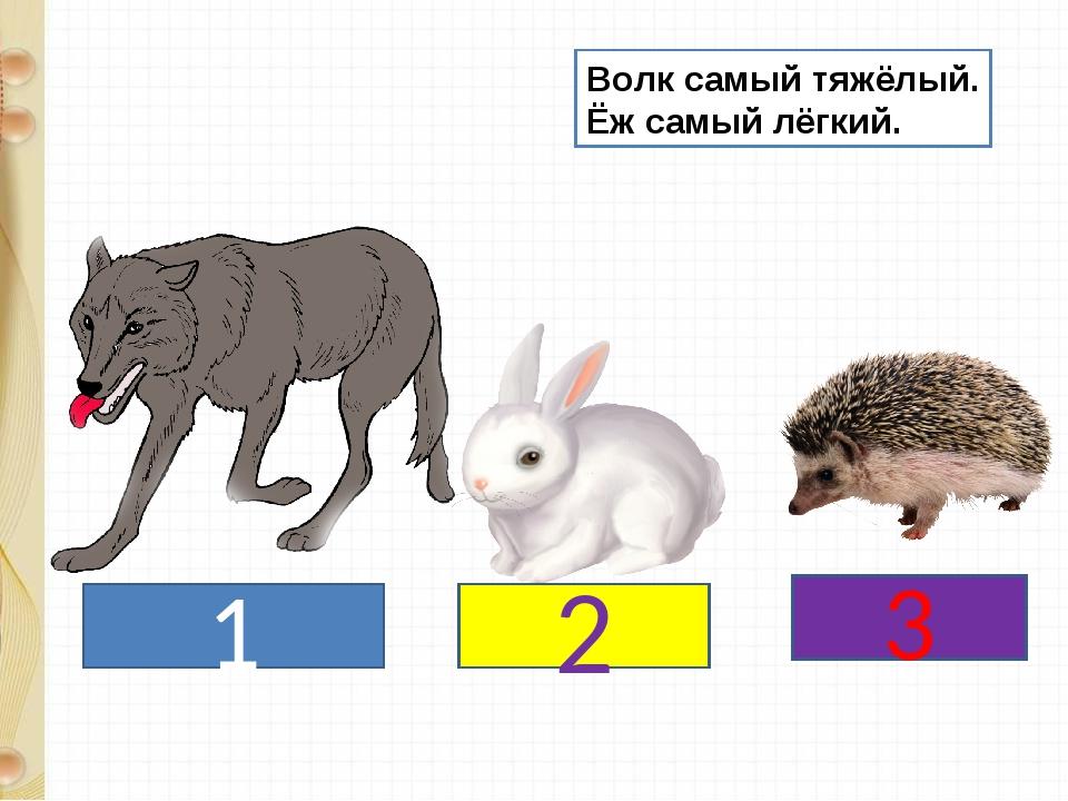 1 2 3 Волк самый тяжёлый. Ёж самый лёгкий.