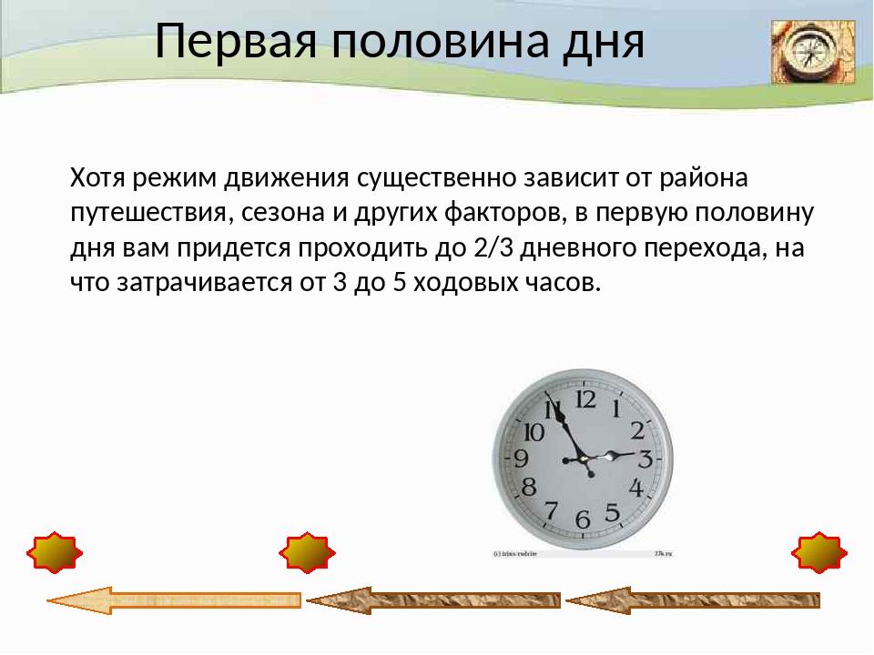 Первая половина дня Хотя режим движения существенно зависит от района путеше...