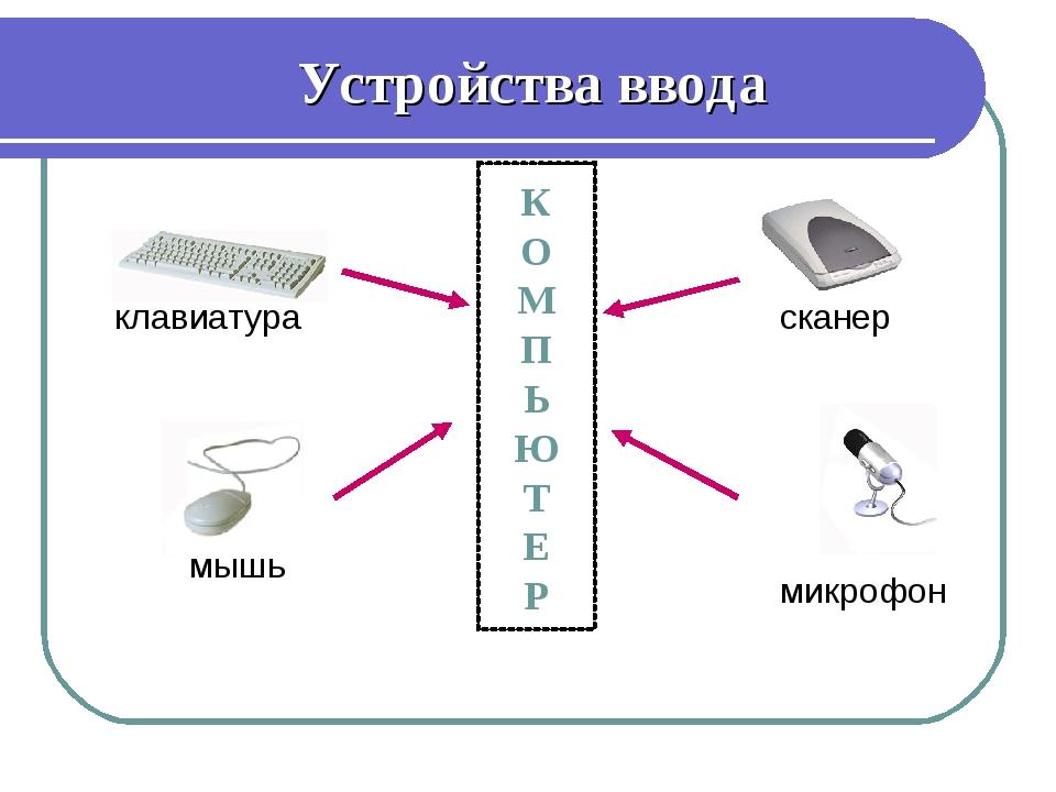 Устройства ввода клавиатура мышь сканер микрофон К О М П Ь Ю Т Е Р