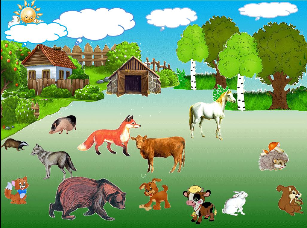 дикие и домашние животные картинки к занятию конструкция позволяет