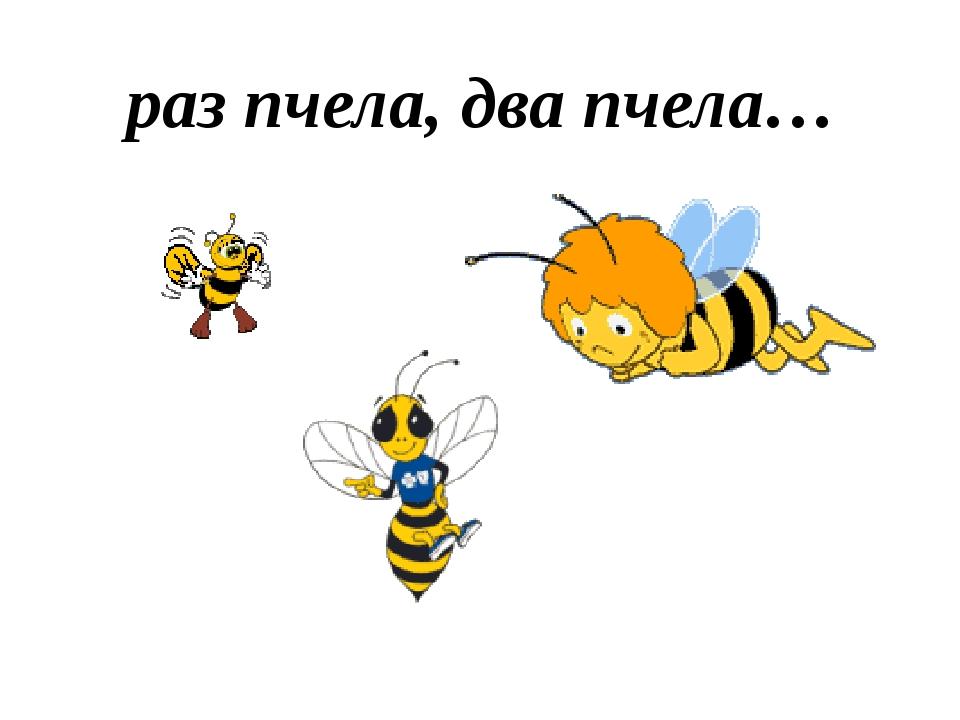раз пчела, два пчела…