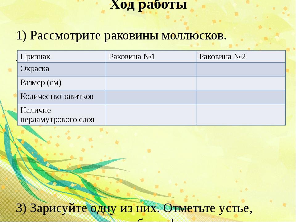 Ход работы 1) Рассмотрите раковины моллюсков. 2) Опишите по плану 3) Зарисуйт...
