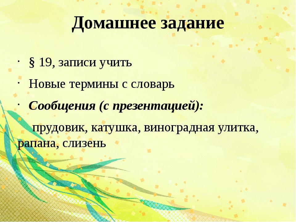 Домашнее задание § 19, записи учить Новые термины с словарь Сообщения (с през...