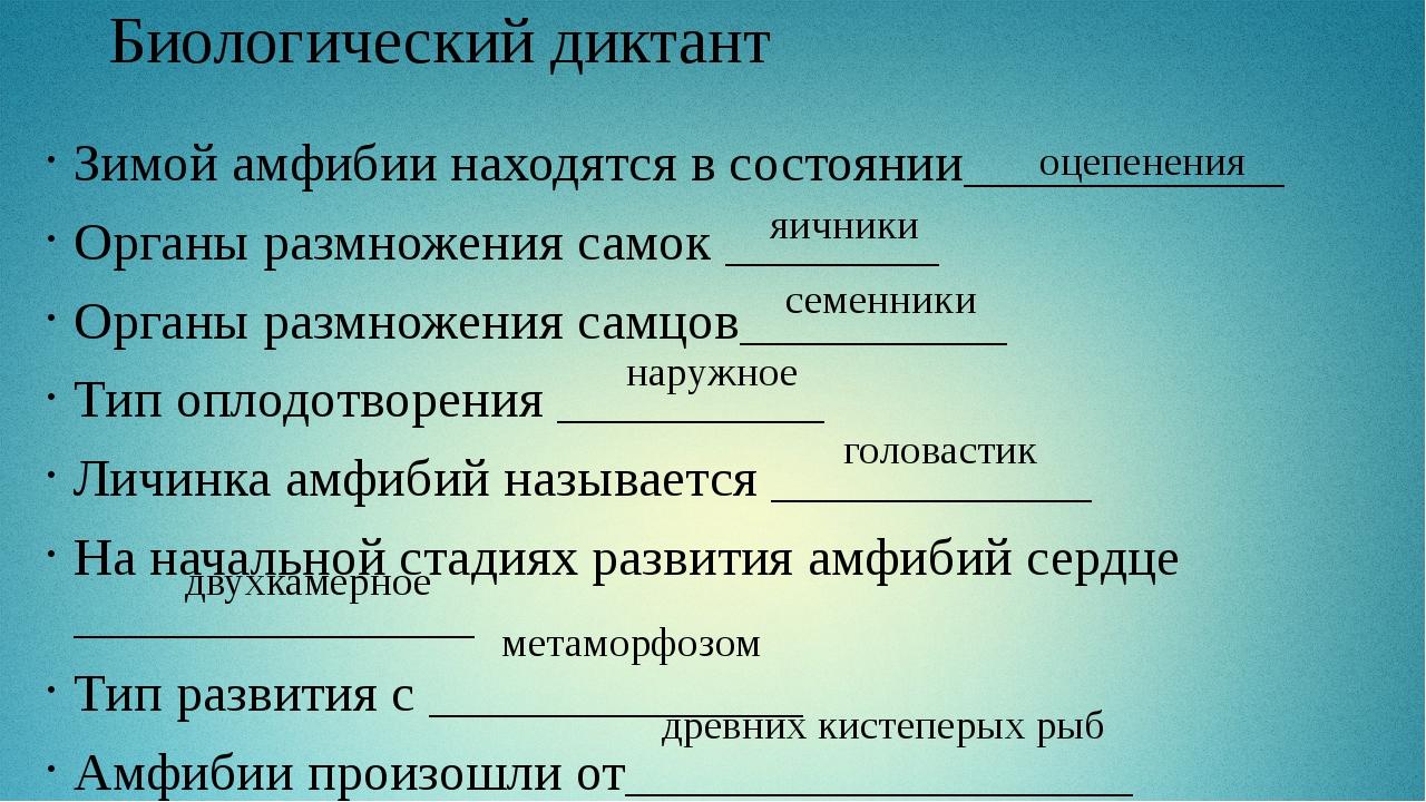 Биологический диктант Зимой амфибии находятся в состоянии____________ Органы...