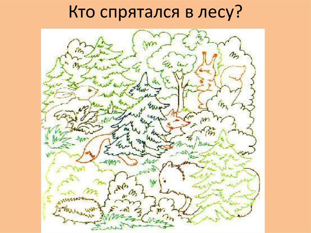 уже пикабу, занимательные картинки о лесе параметры ныне покойного