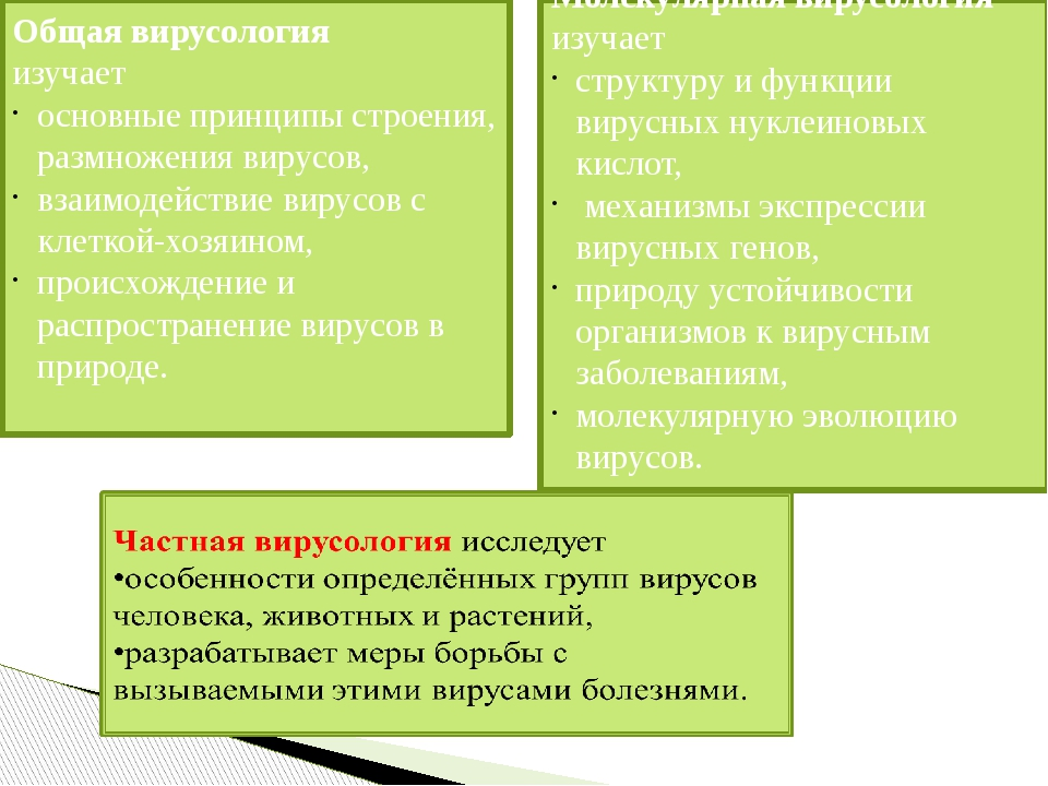 Общая вирусология изучает основные принципы строения, размножения вирусов, вз...