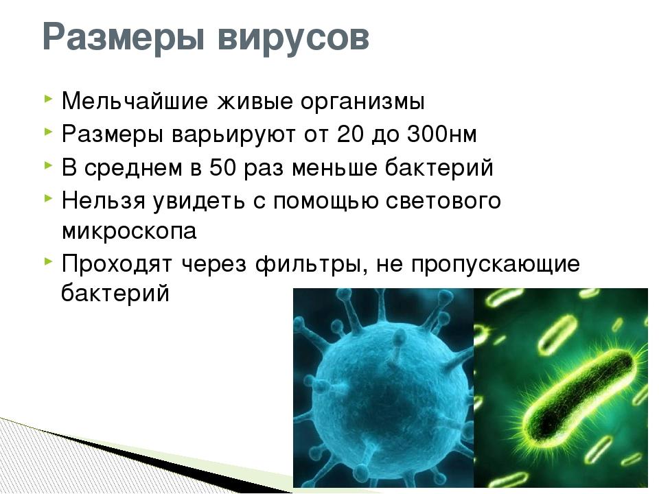 Мельчайшие живые организмы Размеры варьируют от 20 до 300нм В среднем в 50 ра...