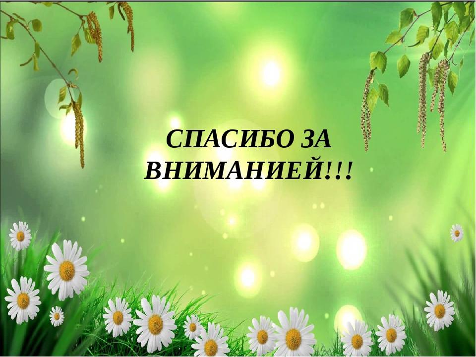 СПАСИБО ЗА ВНИМАНИЕЙ!!!