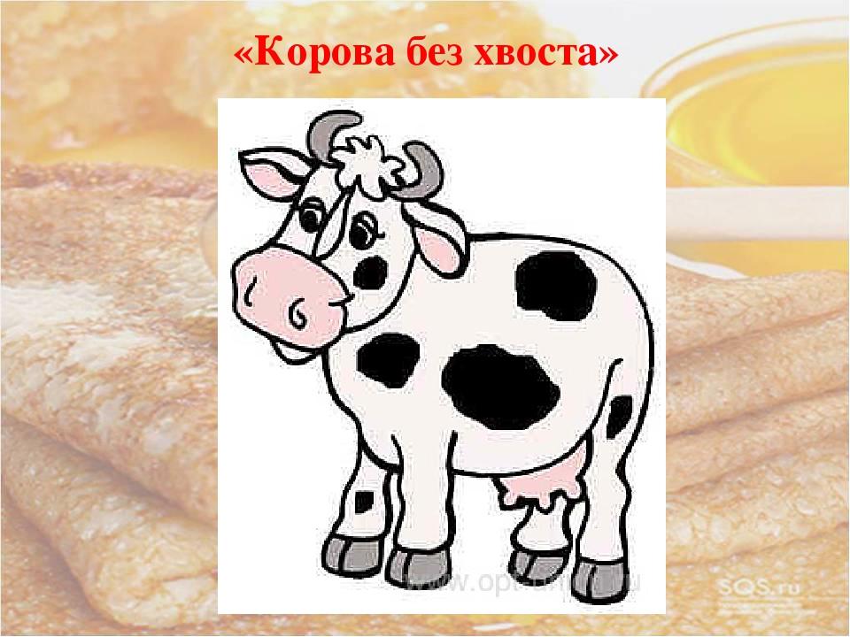 «Корова без хвоста»