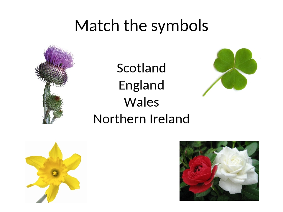 Match the symbols Scotland England Wales Northern Ireland