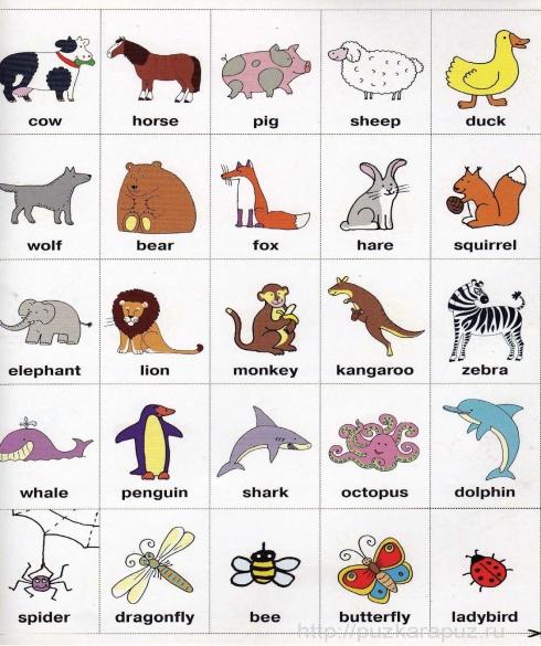 Свадьбой открытки, картинки животных для детей с надписями на английском языке