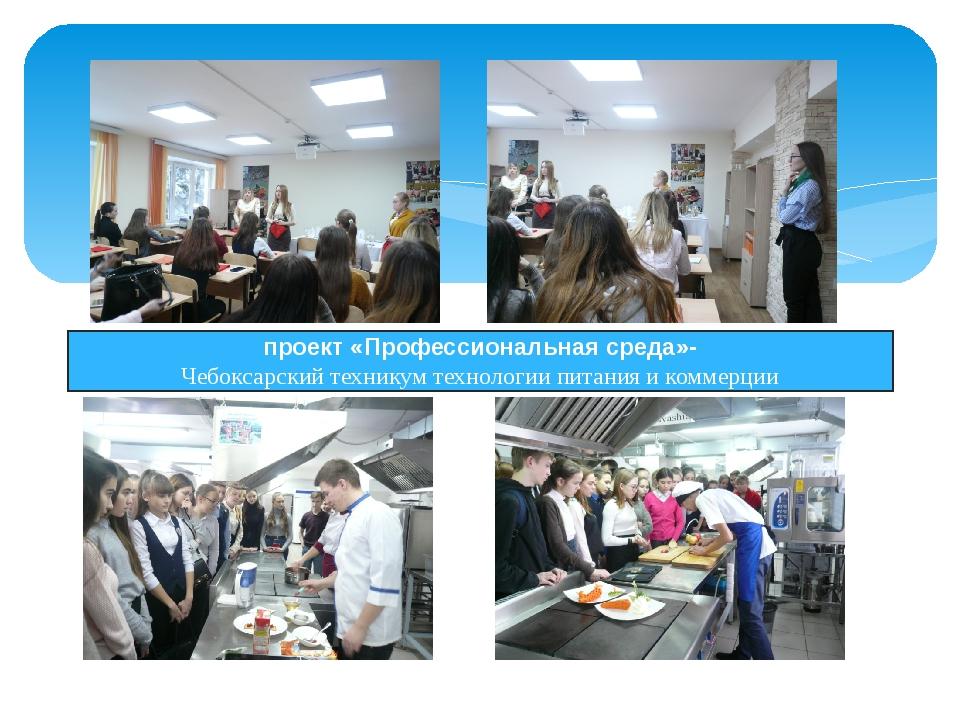 проект «Профессиональная среда»- Чебоксарский техникум технологии питания и...