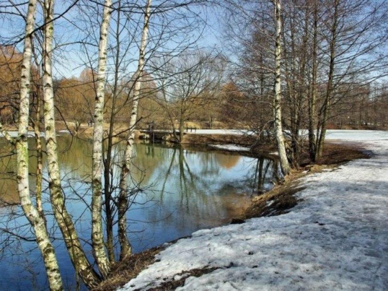 Картинки марта природа в марте