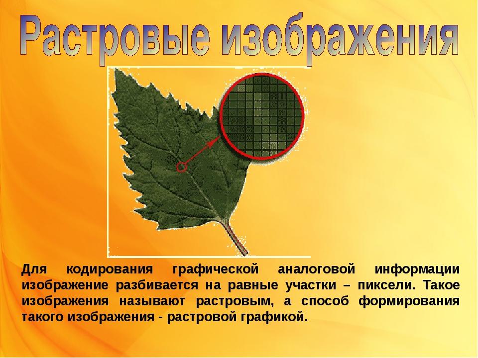 Для кодирования графической аналоговой информации изображение разбивается на...