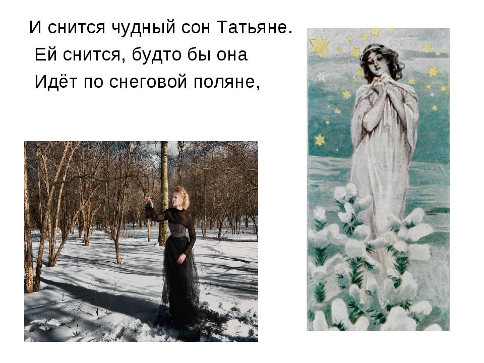 И снится чудный сон Татьяне. Ей снится, будто бы она Идёт по снеговой поляне,