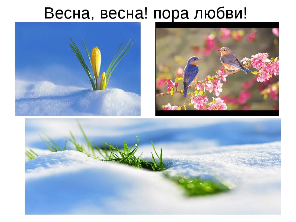 Весна, весна! пора любви!