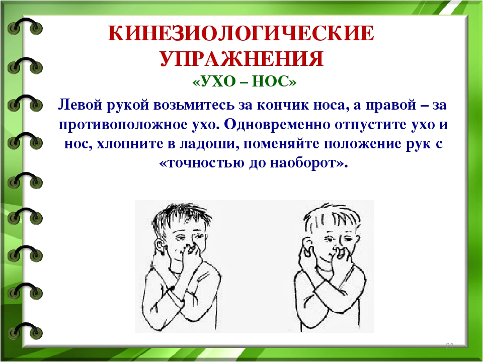 Картинки кинезиологических упражнений