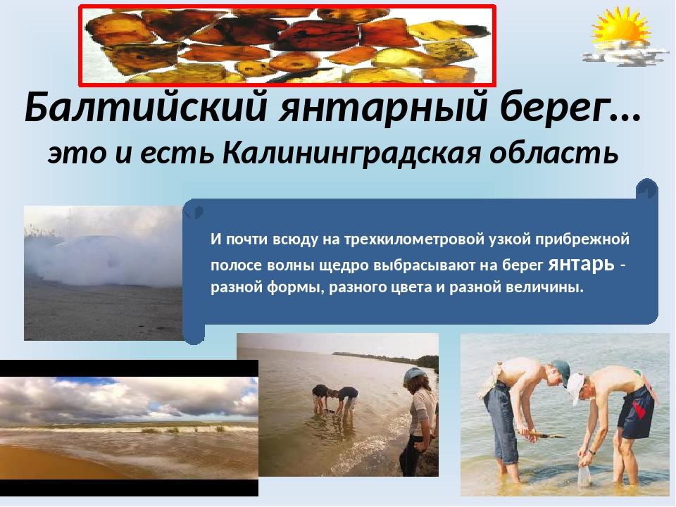 Балтийский янтарный берег… это и есть Калининградская область И почти всюду н...