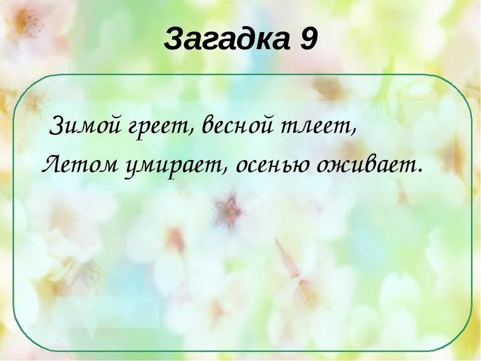 Загадка 9 Зимой греет, весной тлеет, Летом умирает, осенью оживает.