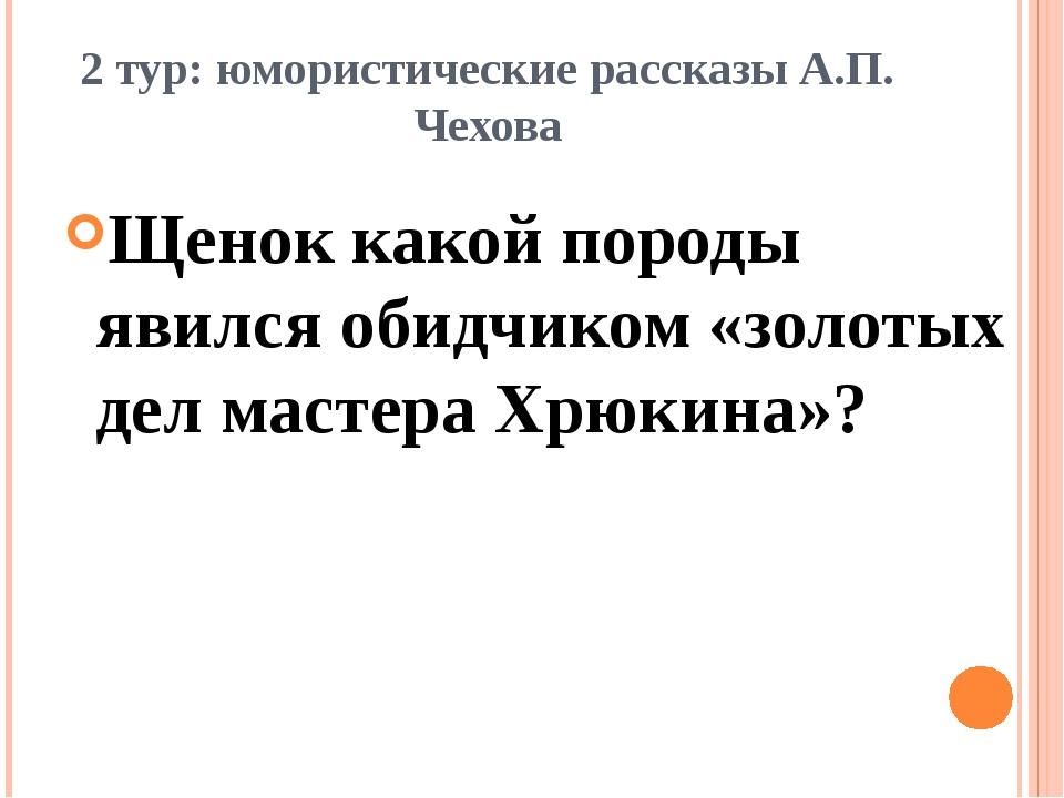 2 тур: юмористические рассказы А.П. Чехова Щенок какой породы явился обидчико...