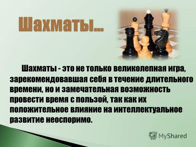 мой стихи шахматы жизнь снимал полностью
