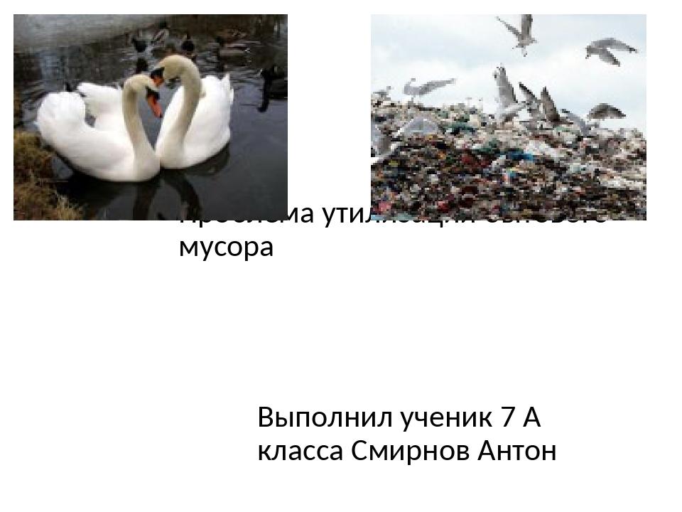 Проблема утилизации бытового мусора Выполнил ученик 7 А класса Смирнов Антон