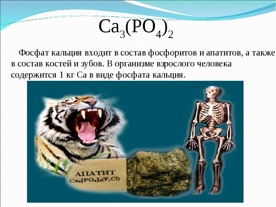 Ca3(PO4)2 Фосфат кальция входит в состав фосфоритов и апатитов, а также в сос...