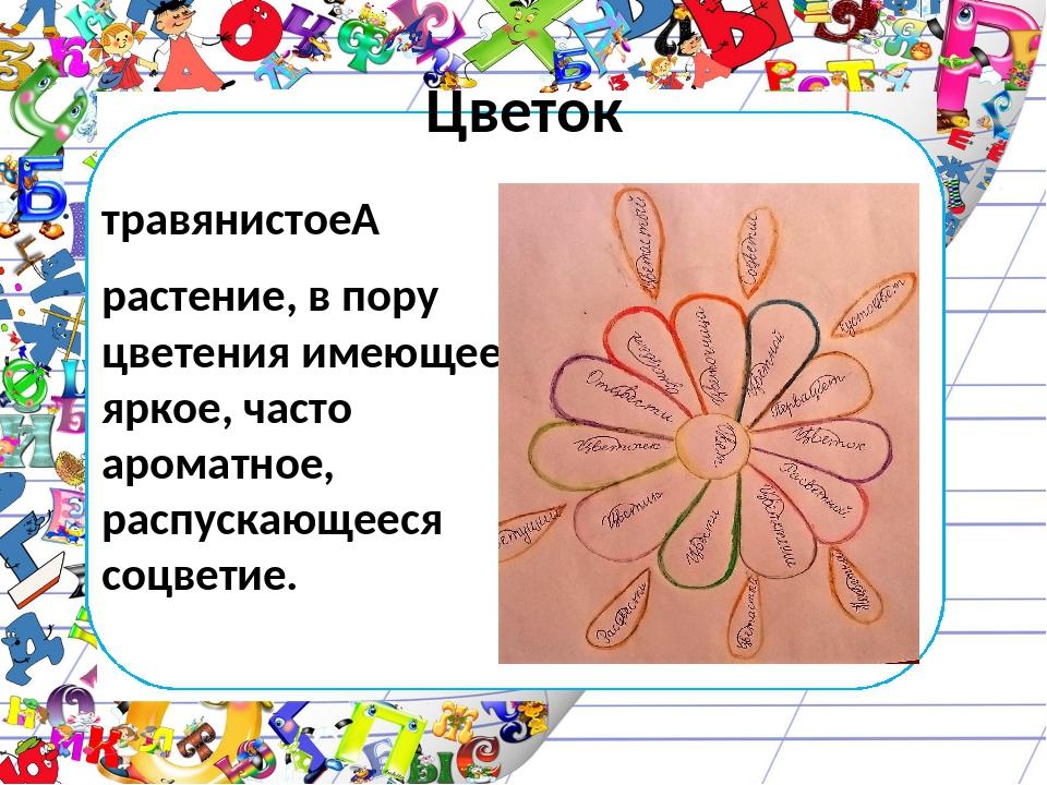 Цветок травянистое растение, в пору цветения имеющее яркое, часто ароматное,...