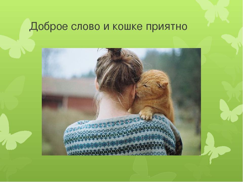 имени доброе слово и кошке приятно картинка деньги тебя
