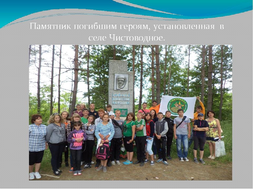 Памятник погибшим героям, установленная в селе Чистоводное.