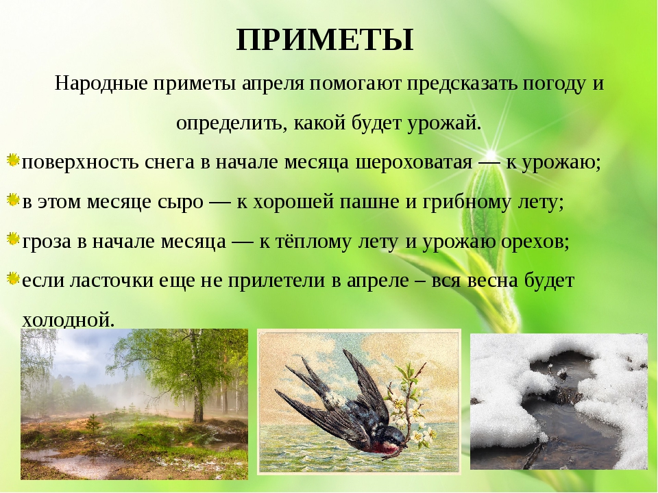 https://ds05.infourok.ru/uploads/ex/0192/000c7129-6d85cee2/img11.jpg