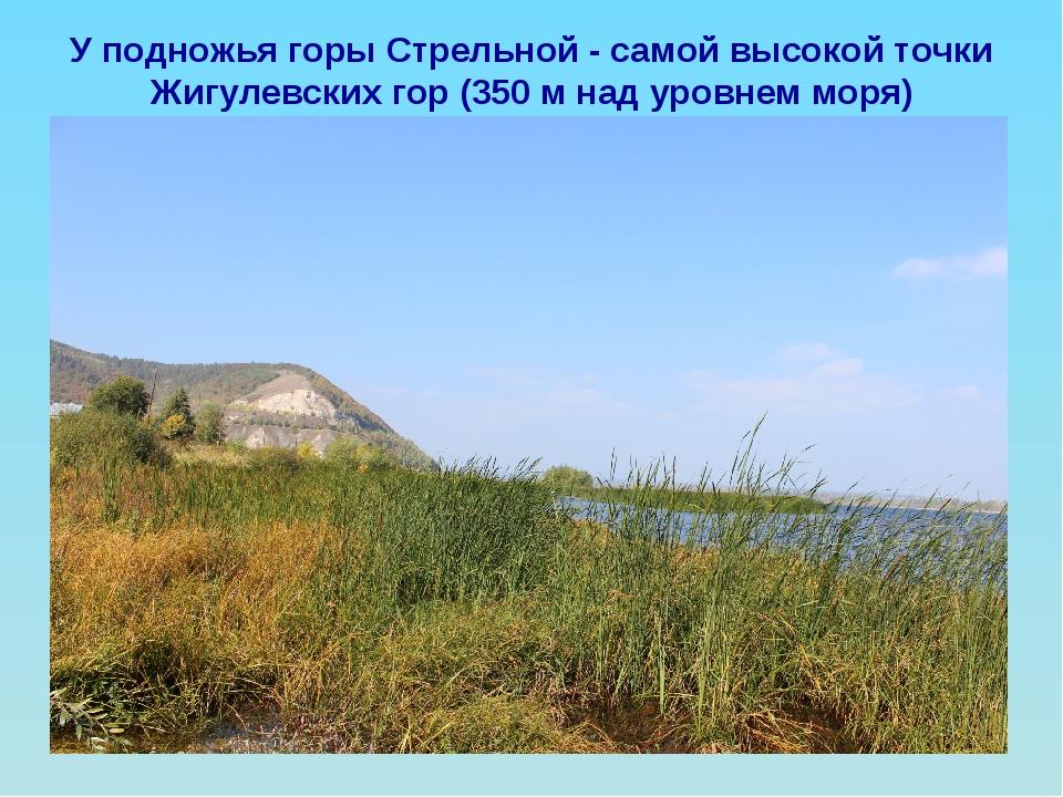 У подножья горы Стрельной - самой высокой точки Жигулевских гор (350 м над ур...