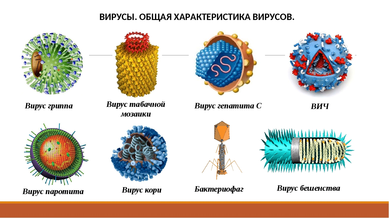 Вирус с названием открытка