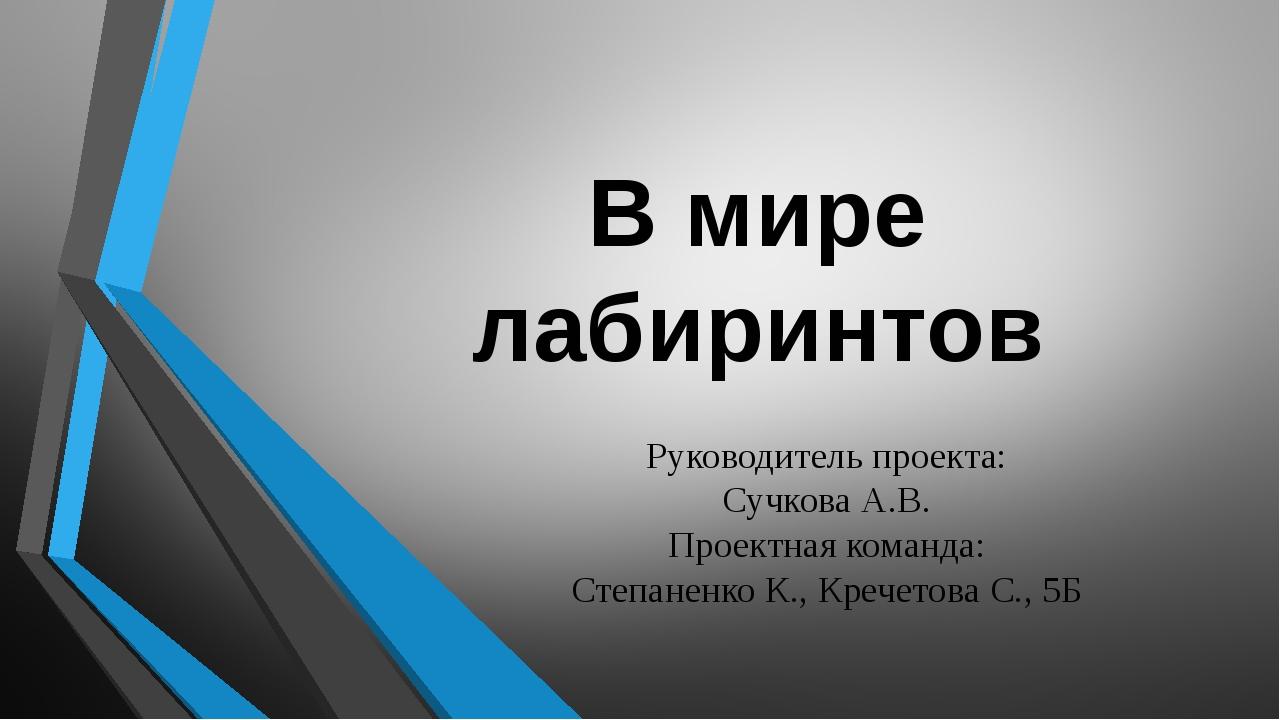 В мире лабиринтов Руководитель проекта: Сучкова А.В. Проектная команда: Степа...