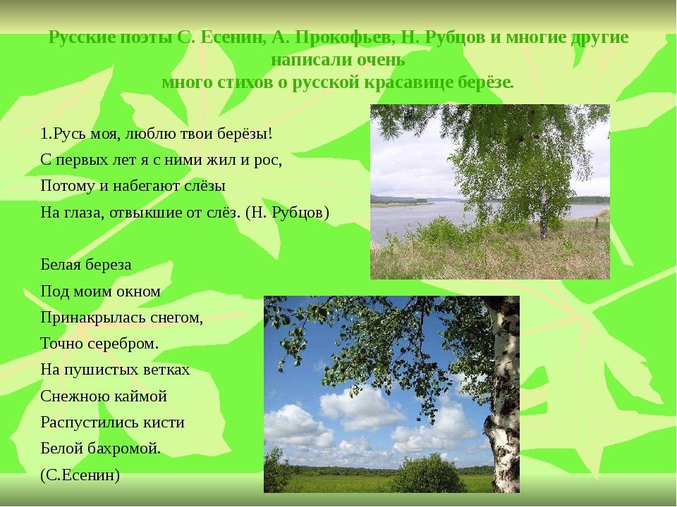 Русские поэты С. Есенин, А. Прокофьев, Н. Рубцов и многие другие написали оче...