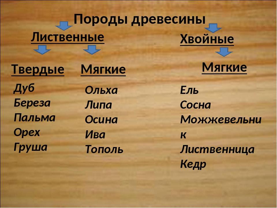 Породы древесины Лиственные Хвойные Мягкие Твердые Мягкие Дуб Береза Пальма О...